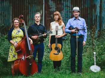 Foghorn Stringband Image